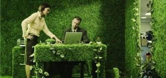 """Pro-ekologiczna firma – jak jeszcze można pokazać się z tej lepszej """"zielonej"""" strony?"""