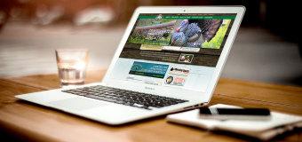 Jak dobre pozycjonowanie stron www może pomóc w rozwoju Twojej firmy?