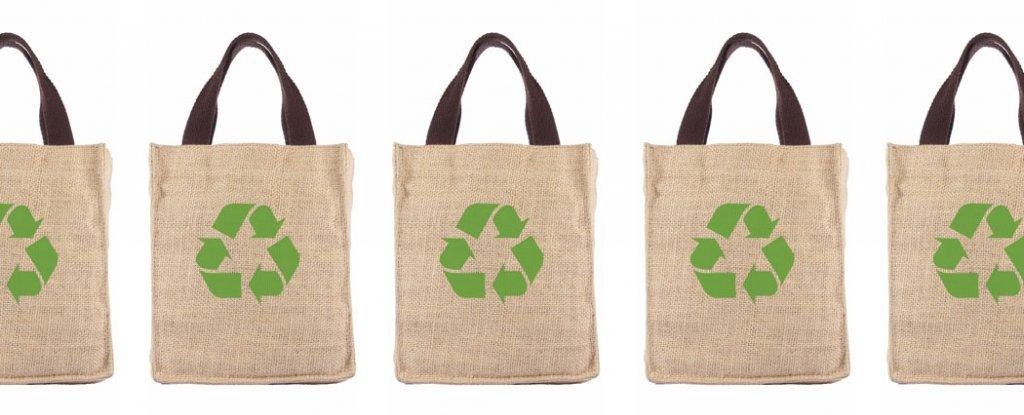 shopping-bags_1024