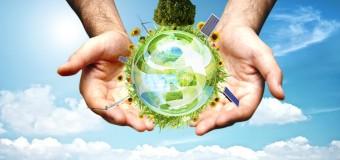 Biznes w zgodzie z naturą, czyli producent opakowań ekologicznych